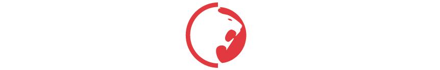 Ground Control White Logo
